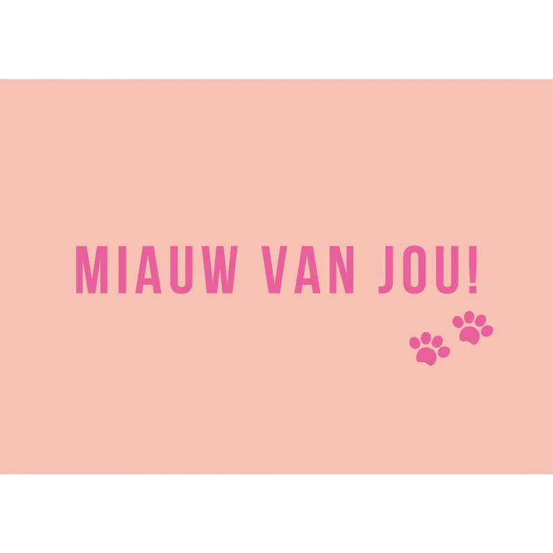 ansichtkaart-van-gekkiggeit-met-lieve-tekst-miauw-van-jou