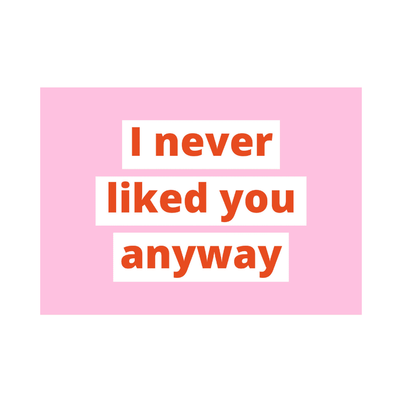 poster-in-a5-formaat-van-gekkiggeit-met-de-tekst-I-never-liked-you-anyway